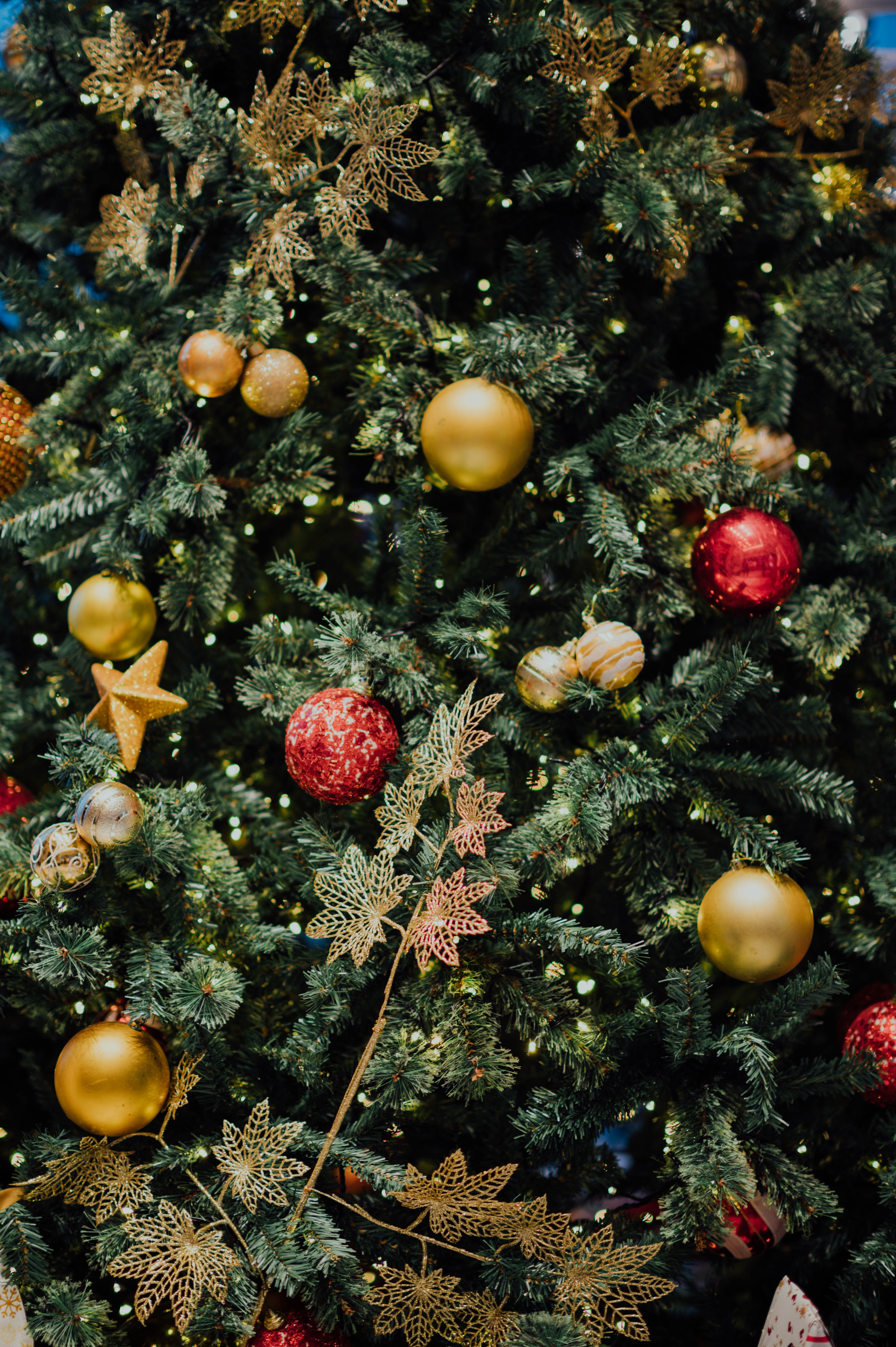 Annual Christmas Tree Festival at St